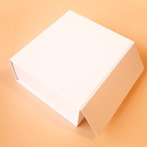 Introductory Bundle